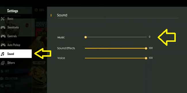 Sound settings in best settings for Free Fire pro players