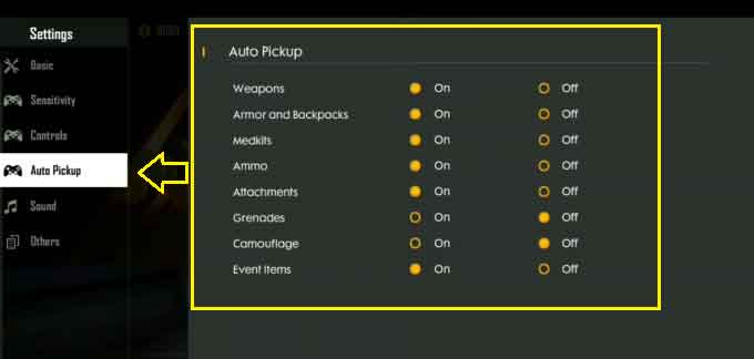 Auto Pickup settings for pro players